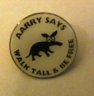 "Cool ""Aarry says"" Pin Badges"